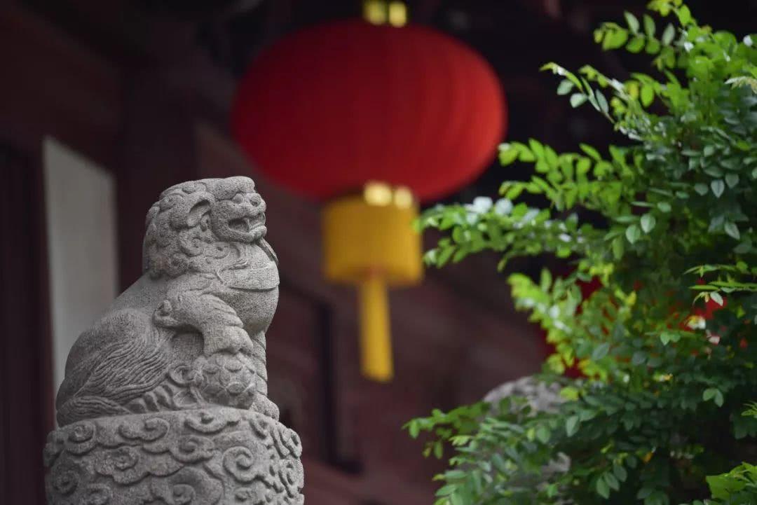 江東良一报导佛教经典名篇:净空法师讲佛经-吃亏是福报 计较走恶道