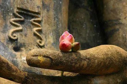 法供养功德最大:如何将佛法演说于他人?