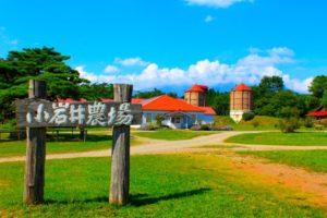 五月最适合去日本哪里治愈?日媒推荐十大日本牧场