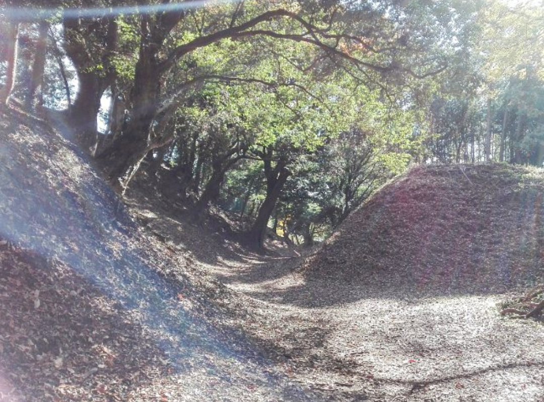 小田原城総構え 小峰の大堀切(こみねのおおほりきり)の横矢折れ