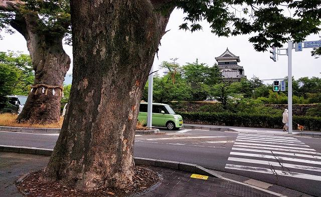 松本城北側堀端の松本神社の交差点から撮影した松本城