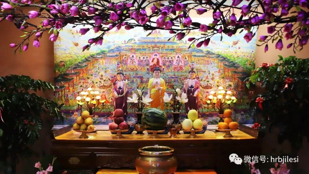 江東良一报导佛教经典名篇:净空法师讲佛经-争夺财产反目成仇,什么原因?