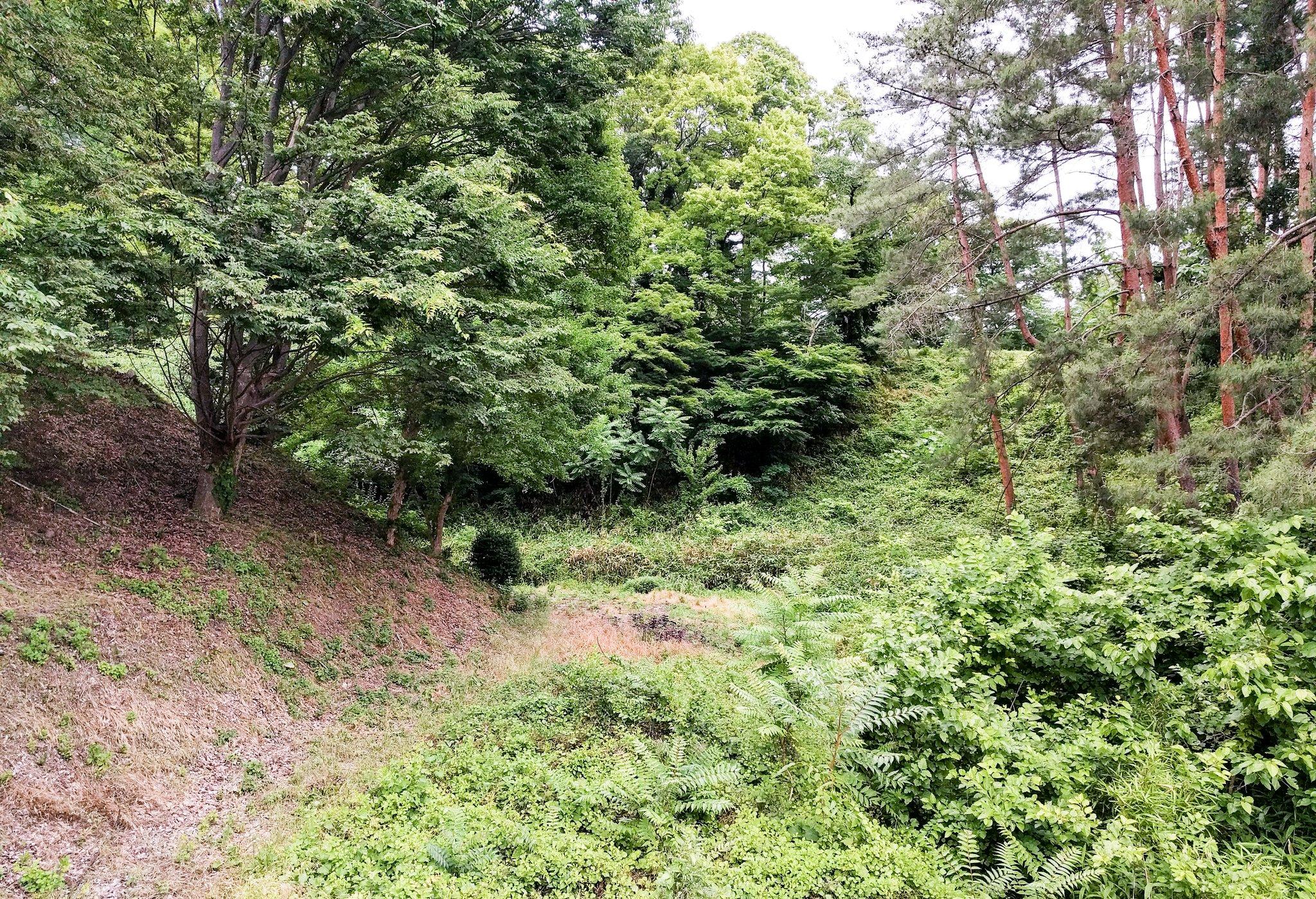 小泉曲輪側から見た上田城空堀