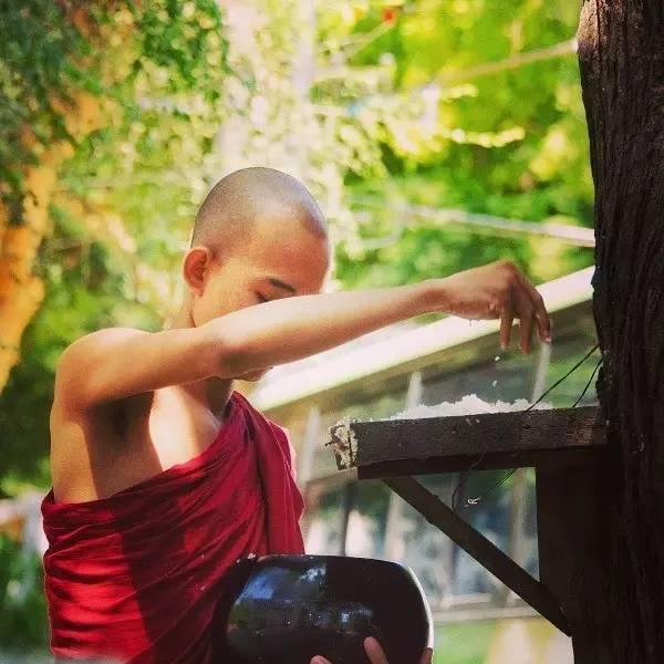 佛陀教会你,看前世今生