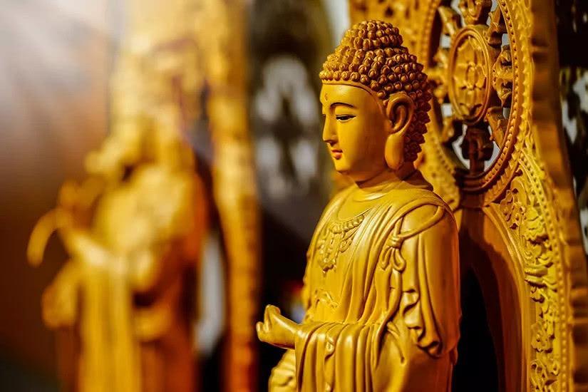 【小陆精选佛教人生】经常放生行善,为何仍觉命运没有大的改善?20190212