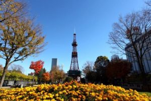 可去札幌雪祭!大通公园和札幌电视塔