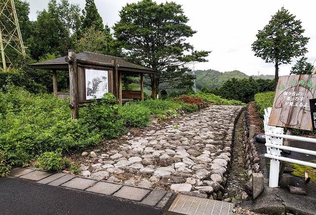諏訪原城大手南外堀の西南西に位置する旧東海道・菊川坂と、右に少し見える茶畑が大手外馬出