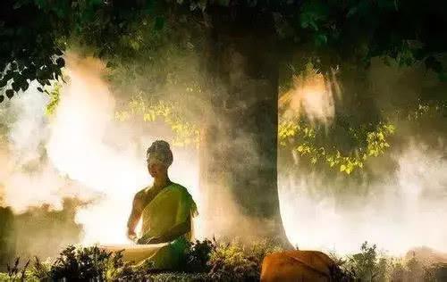 从佛法的角度看业力与命运
