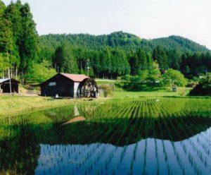 日本的原始风景  –  大室水车