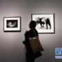 日本摄影师作品在美国华盛顿展出