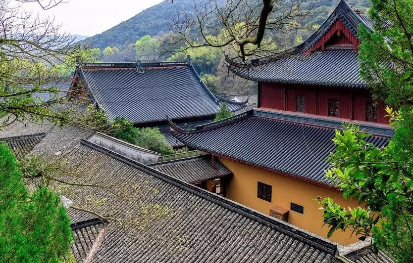 遇到人生困惑时,如何到寺院向法师请法?