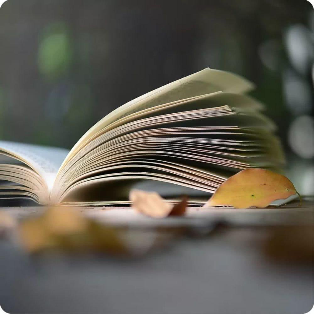 佛学入门书TOP10,带你走进智慧与喜乐的世界