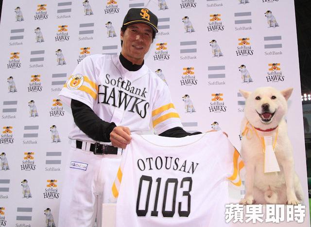 【日职总冠军战】软银「お父さん犬」竟遭禁赛