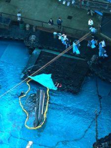 日本环球影城再出事故 水上表演突然翻船