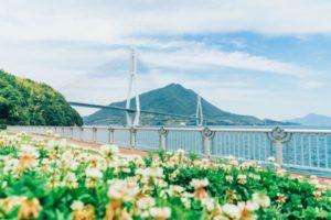【广岛】跨海骑行闯入彼得兔乐园