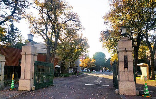 ポプラ並木あり、紅葉あり、池もありの雄大なキャンパス、北海道大学【連載:アキラの着目】