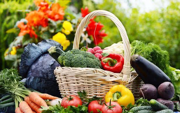 7种素食足以替代肉, 完美补充蛋白质所需
