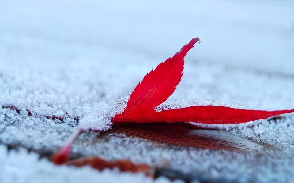 冬季养生方法,快来了解一下!