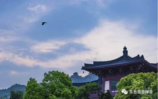 【小陆精选佛教人生】智慧、财富与幸福,哪个更重要?20181120