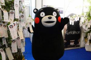 熊本熊竟然不是熊官方中文名少有人知