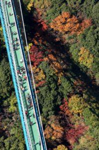 日本茨城龙神峡迎来红叶观赏季
