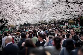 详讯:今年访日外国游客即将突破3000万人次