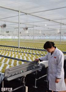 京东有了自己的植物工厂