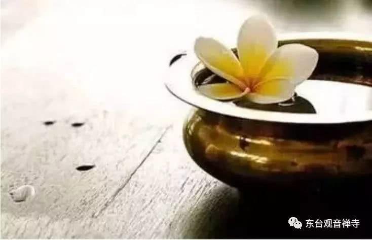 【小陆精选佛教人生】感恩伤害你的人,他们都是来度你的!20190105