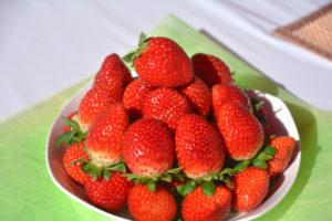 日本培育出新品种草莓 一颗卖600元!