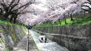 琵琶湖疏水通船