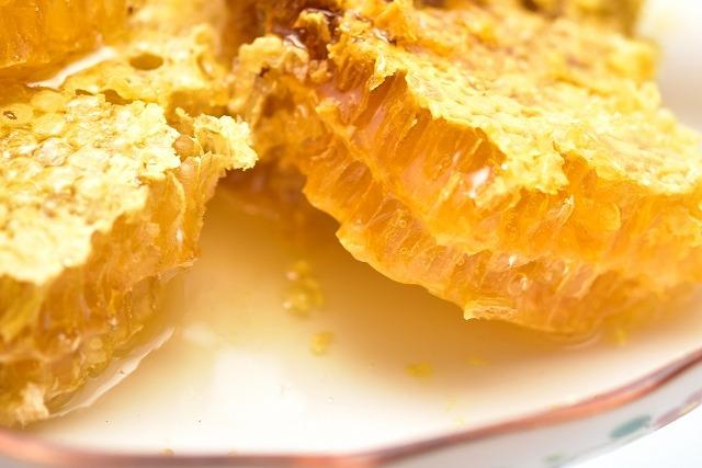 養蜂セットで自家製ハチミツを採取【連載:アキラの着目】