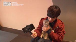 为配好《同居人是猫》 小野贤章特意去撸猫