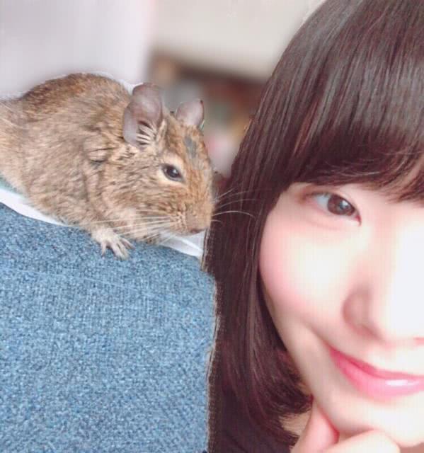 《兽娘》声优本宫佳奈:我老公是一只八齿鼠