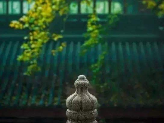 【小陆精选佛教人生】人生三大智慧:知足、知止、知常20190119