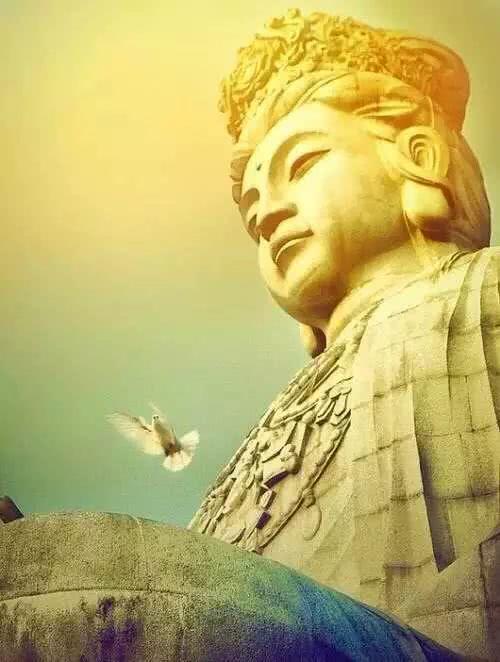 """【小陆精选佛教人生】佛陀总说""""人身难得"""",到底有多难得?20190124"""