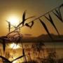 【江东良一作品】『大海的季節』谁都能听懂的地藏经之第二章摩耶夫人20190102