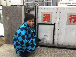 疑似班克西涂鸦现东京角落当局祭保护措施