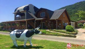 观光体验牧场:Tom Milk Farm