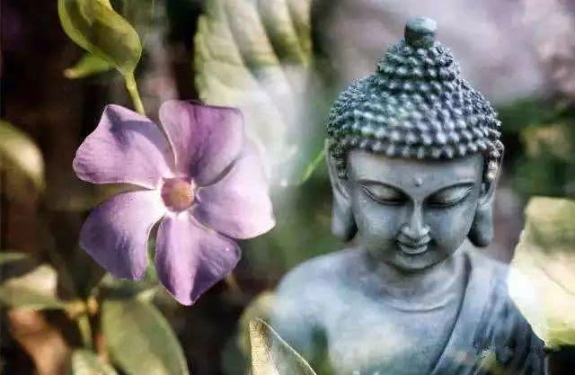 佛法是道,它清净、无瑕、无垢染!