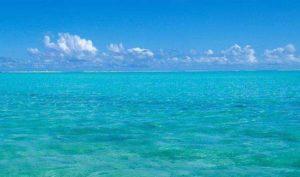 中日欧调查团队在南太平洋海底发现广泛分布稀有金属