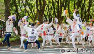 【宫城】仙台青叶祭