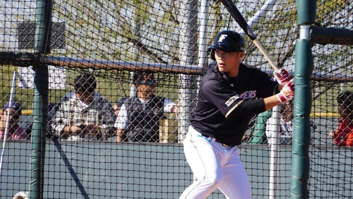 日职/王柏融战力值日本棒球周刊评价A级