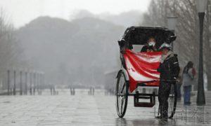 日本首都圈积雪16人被送医 百余航班取消
