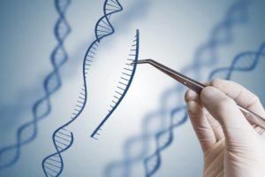 世卫组织拟制定基因编辑国际标准 下月召开咨询会议