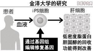 日本研究基因编辑iPS细胞治疗高胆固醇血症