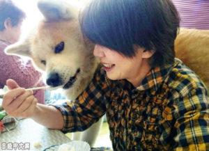 """""""90岁""""秋田犬救了90多岁老奶奶"""
