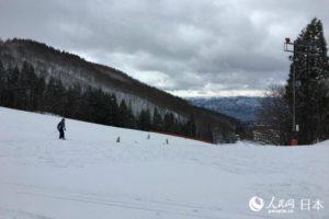 """""""日本东北地区滑雪体验活动""""带你发现冬日日本新魅力"""