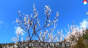 【游日本】到武田信玄泡过的名汤赏看似雪白梅