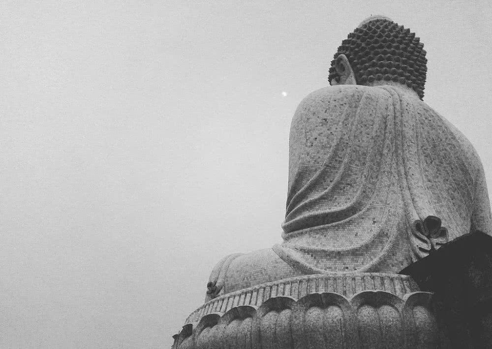 佛教为什么戒杀生?精神何在?