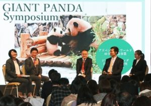 大熊猫繁殖研讨会在和歌山县白滨町举行